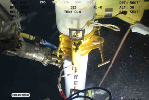 Subsea infrastructure integrity monitoring