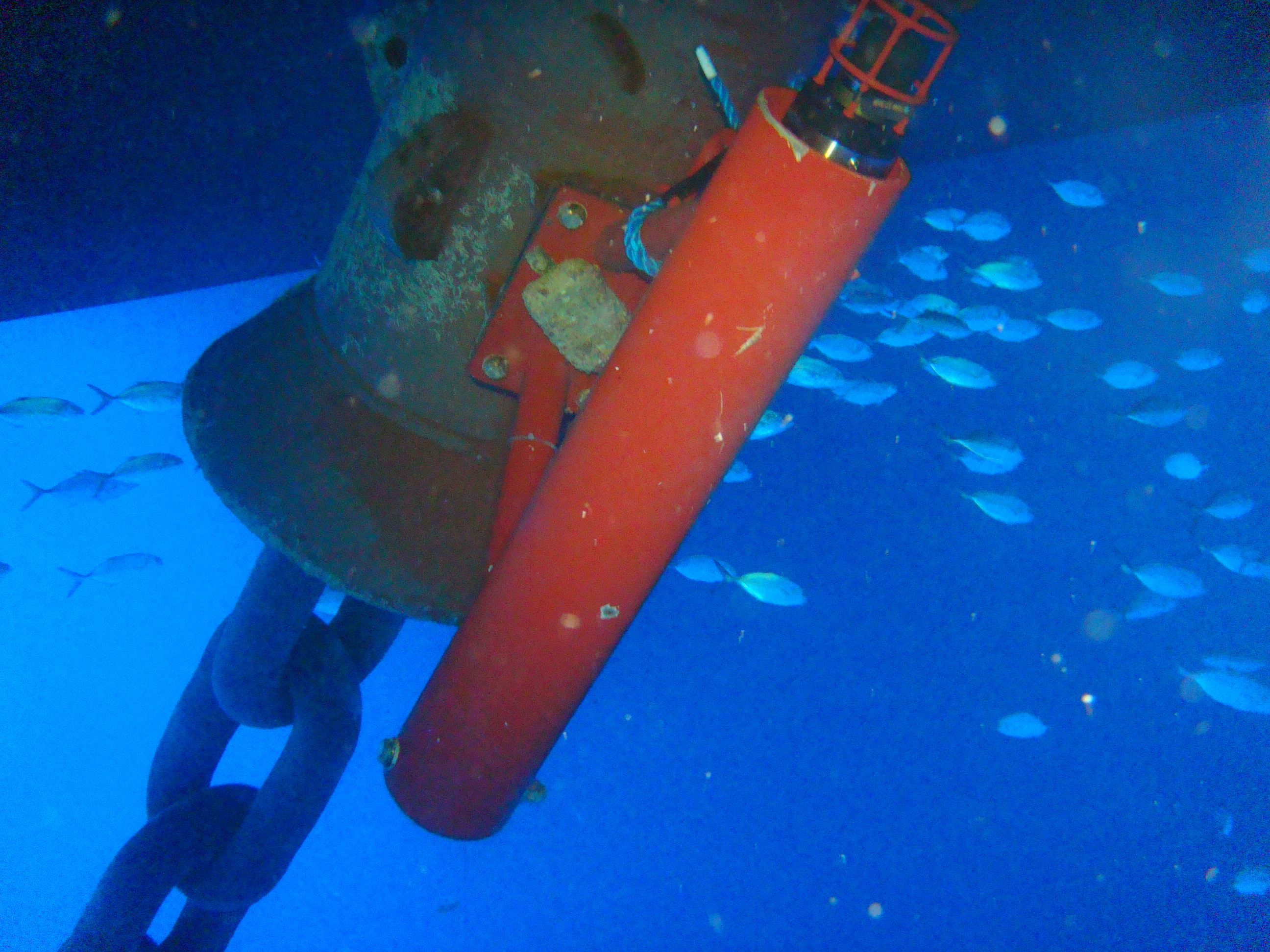 Underwater Acoustic logger 4
