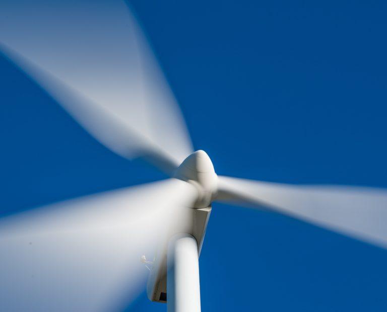 windmill-1330517-50